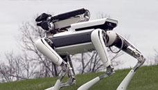 SpotMini на Boston Dynamics се сопнува само на банани